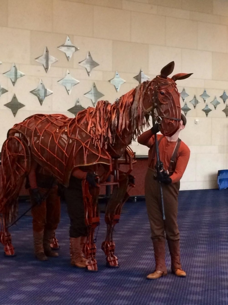 Photos: 'Joey' from WAR HORSE Visits the Hobby Center