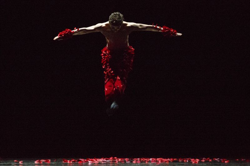 BWW Reviews: 'Physical Thinking' Soars And Inspires