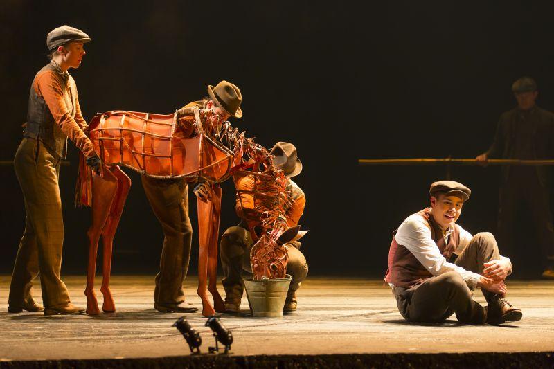 BWW Reviews: WAR HORSE Brings Heartwarming Tale to Nashville