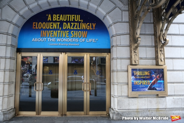 Up on the Marquee: THE CURIOUS INCIDENT OF THE DOG IN THE NIGHT-TIME