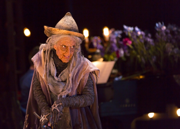 Photo Flash: First Look at the Oregon Shakespeare Festival's INTO THE WOODS
