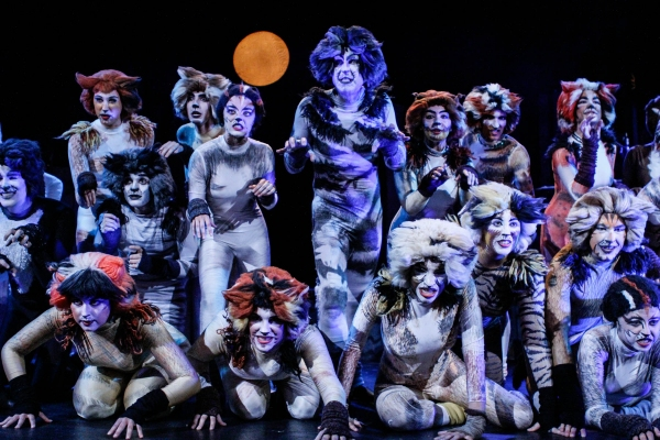 Photo Flash: First Look at BroadHollow Theatre's CATS