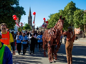 Joey, the War Horse, at the 2014 National Arts Festival