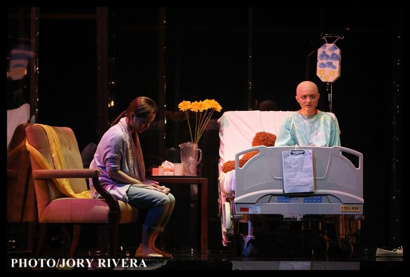 BWW Reviews: Kooman and Dimond's DANI GIRL