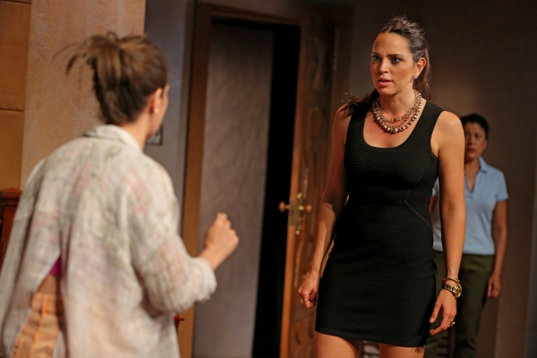 Photo Flash: First Look at Marta Milans, Roberta Colindrez and More in Second Stage Theatre's MALA HIERBA