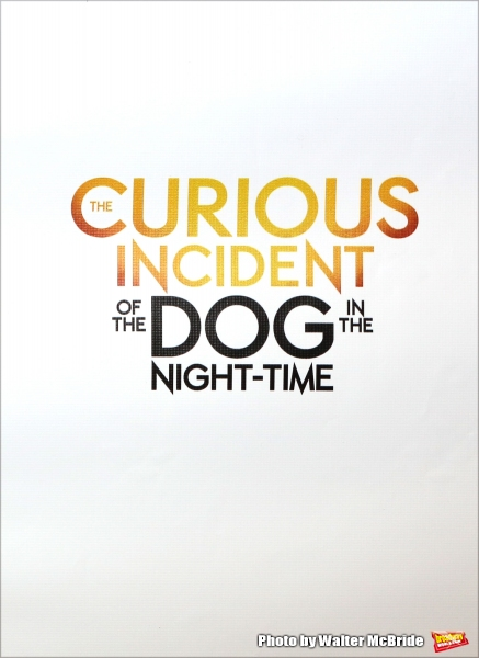 Photo Coverage: Meet the Company of Broadway's THE CURIOUS INCIDENT OF THE DOG IN THE NIGHT-TIME