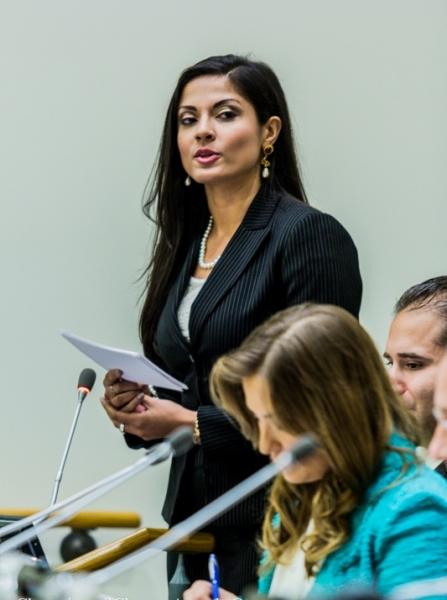 Photo Flash: THEY CALL ME Q's Qurrat Ann Kadwani Moderates Panel at United Nations
