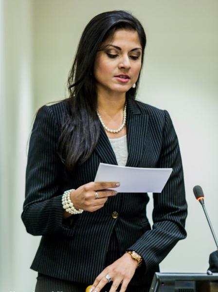 Photo Flash: THEY CALL ME Q's Qurrat Ann Kadwani Moderates Panel at United Nations