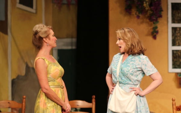 Photo Flash: First Look at Emily Skinner and More in 42nd Street Moon's DO I HEAR A WALTZ?