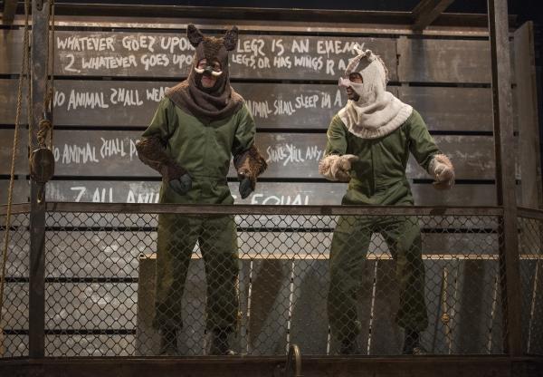 Napoleon (Blake Montgomery) and Snowball (Sean Parris) negotiate leadership