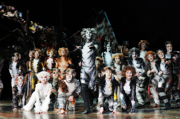 Cats Back On Broadway