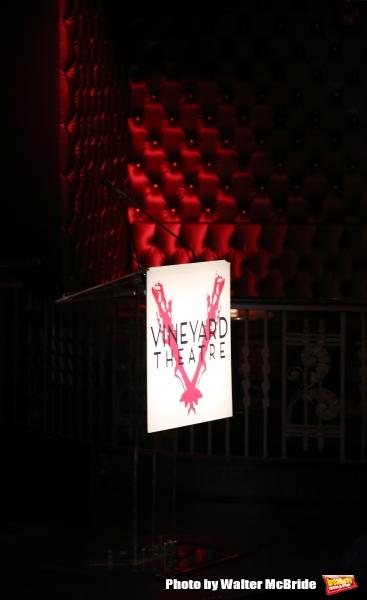 The 2015 Vineyard Theatre Gala presentation