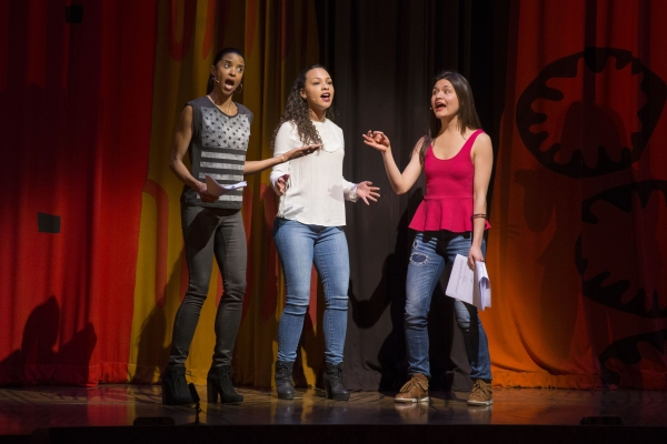 Renee Elise Goldsberry, Jasmine Cephas Jones and Phillipa Soo. Photo Credit: Monica Simoes