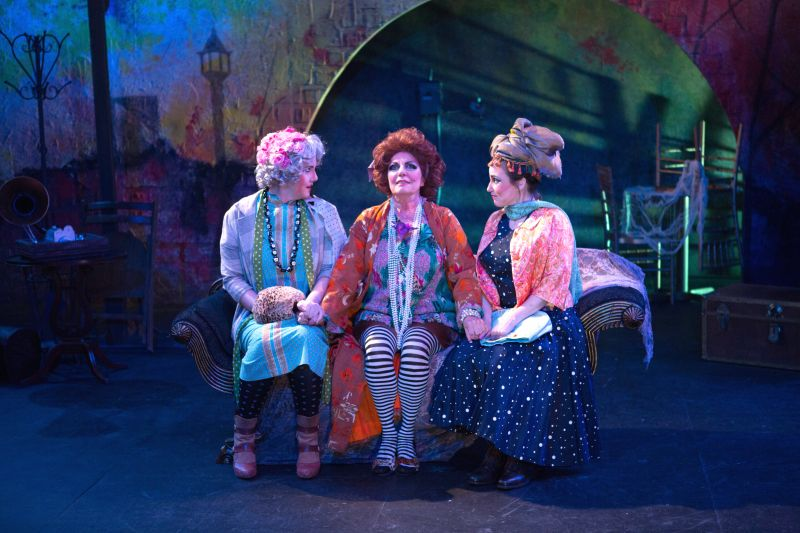 BWW Reviews: MADWOMAN OF CHAILLOT Saves the World in Style at Avant Bard