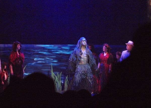 Photos: Curtain Call and Opening Night Celebration Of 3-D Theatricals' TARZAN THE STAGE MUSICAL BASED ON THE DISNEY FILM