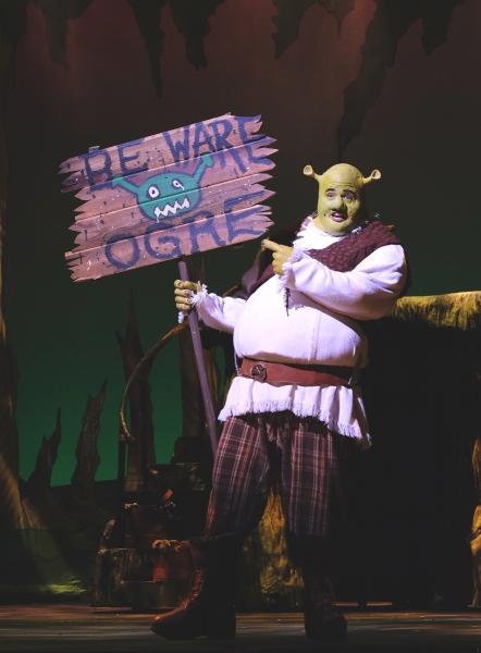 T.J. Dawson as Shrek