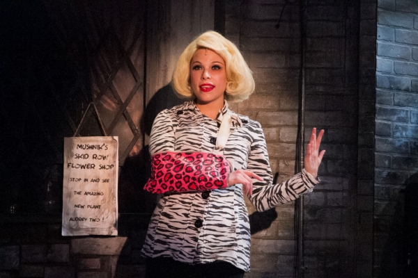 Photo Flash: First Look at Lauren Marcus, Ryan Vona and More in LITTLE SHOP OF HORRORS at Sharon Playhouse