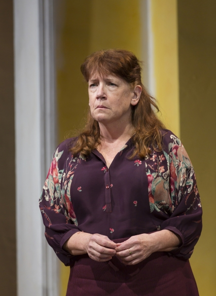 Photo Flash: First Look at Dagmara Dominczyk, Ann Dowd and Bill Heck in Signature's NIGHT IS A ROOM