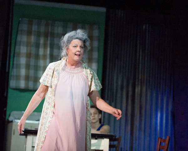 Susan Wefel as Grandma Photo