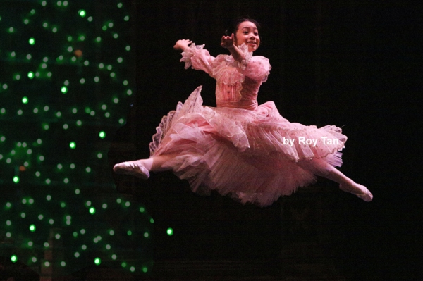 the nutracker review The nutcracker movie reviews & metacritic score: nine-year-old mary's dull  viennese christmas is suddenly filled with excitement and adventure following  the.