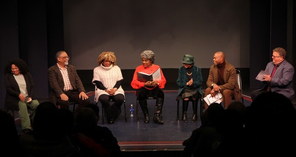 The Panel: Julia Lema, William Foster McDaniel, Leslie Dockery, Tina Fabrique, Micki Grant, Erich McMillan-McCall and James Morgan.