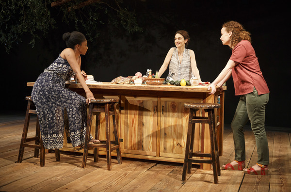 Photo Flash: First Look at Anne Washburn's ANTLIA PNEUMATICA at Playwrights Horizons