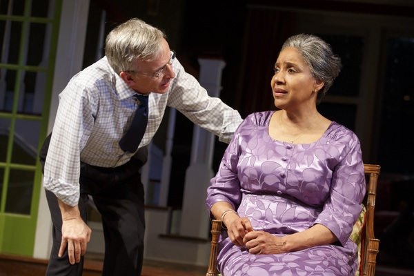 Robert Joy and Phylicia Rashad