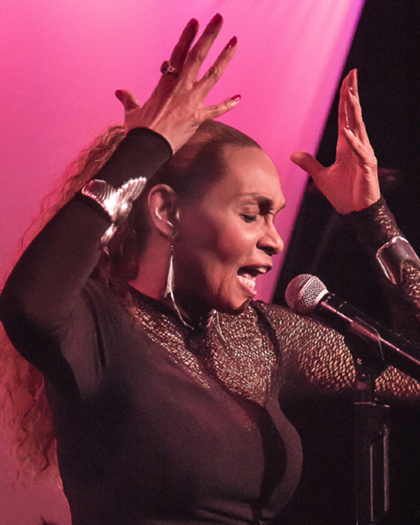 Photo Flash Exclusive: Vivian Reed Premieres New Show 'Standards and More' at the Metropolitan Room