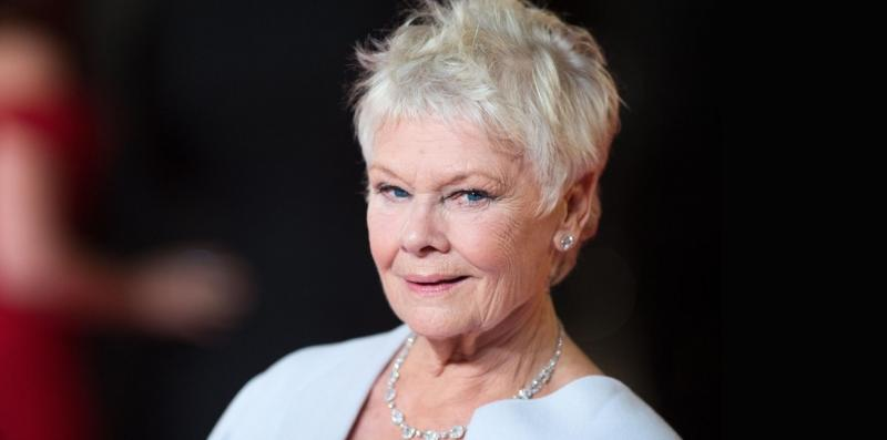 BWW Exclusive Audio: Dame Judi Dench on Shakespeare, Playing Grizabella, Broadway Return