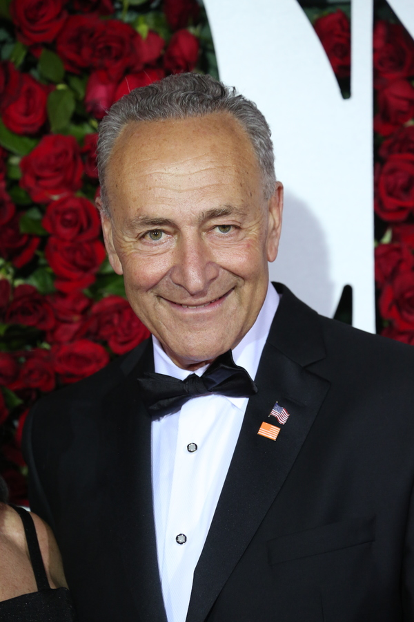 Senator Chuck Schumer Photo