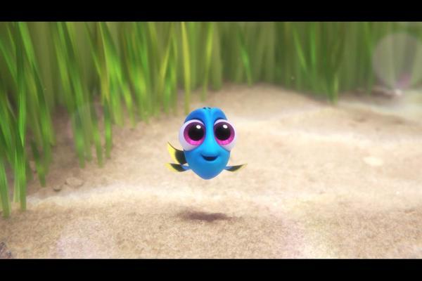 Ellen DeGeneres is adorable blue tang fish Dory.