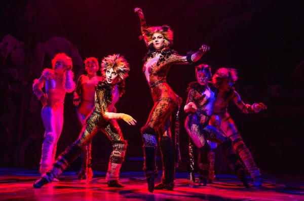 Photo Flash: Jellicle CATS Come out Tonight - First Look at the Broadway Revival!