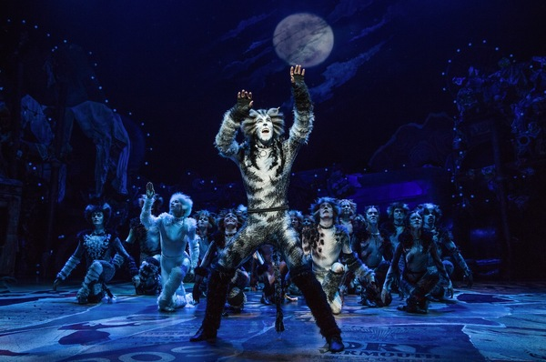 Cats Production Photo