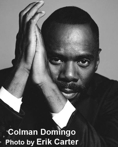 BWW Interview: Colman Domingo on His Intervening BARBECUE, Hollywood & Controversies