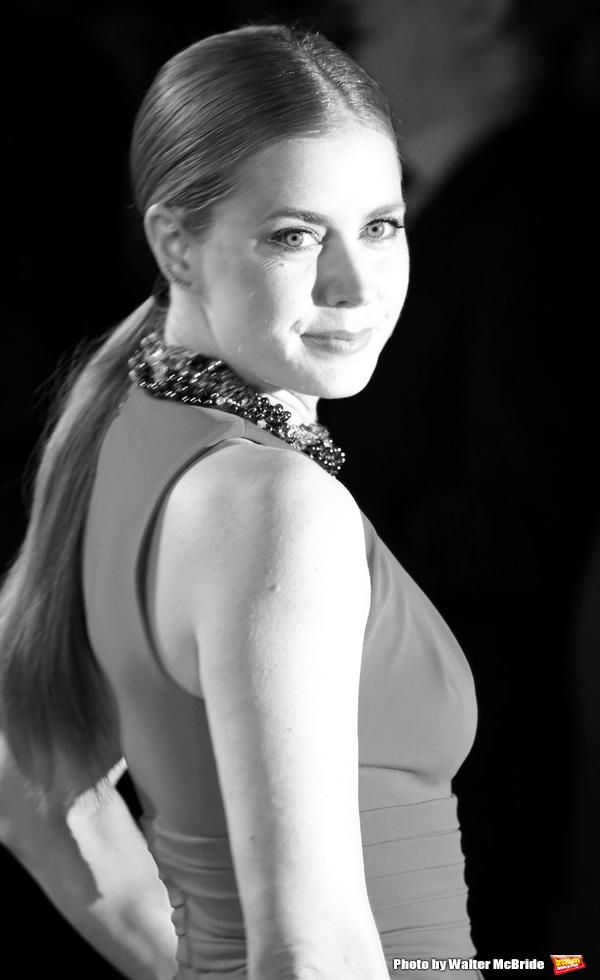 Amy Adams Photo