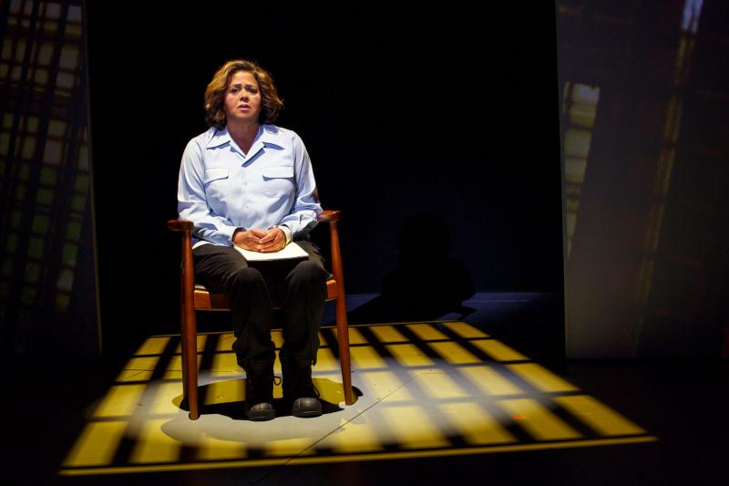 BWW Review: Anna Deavere Smith's NOTES FROM THE FIELD; Voices From America's School-To-Prison Pipeline