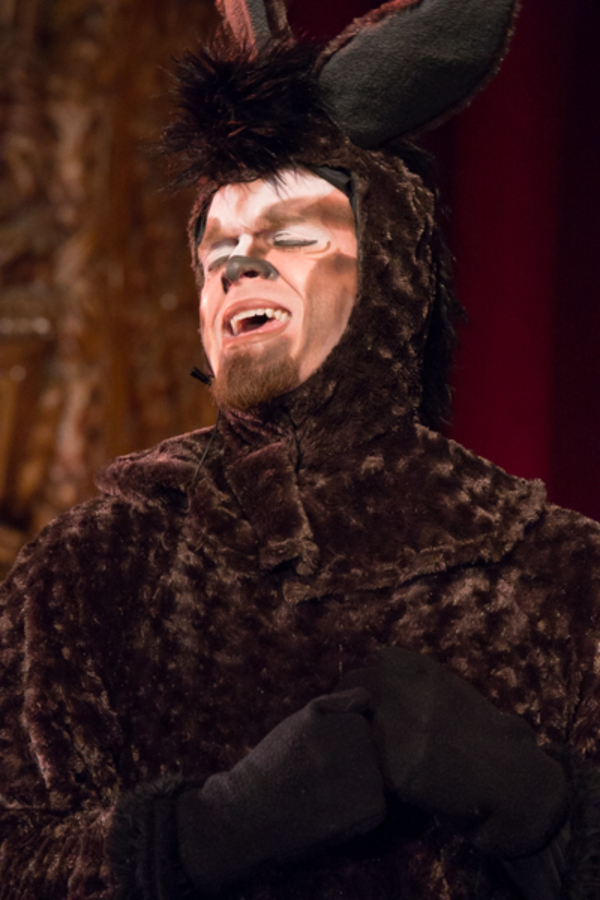 Photo Coverage: First look at Wagnalls Community Theater Presents SHREK THE MUSICAL