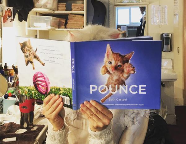 Cats (Broadway): @georgina_pazcoguin Catching up on some kitty reading! @officialbroadwayworld #sip #littlefriendsphotography #rogueballerina