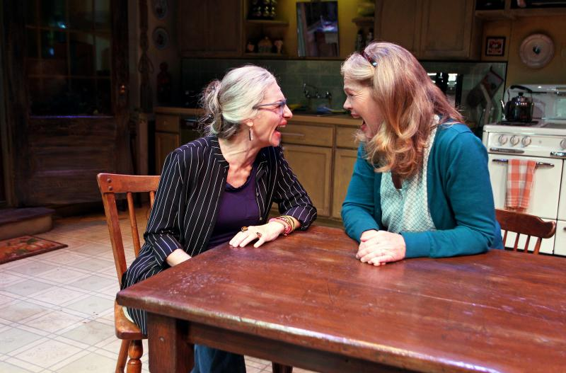 BWW Review: South Coast Repertory's Quirky Play THE ROOMMATE Shakes Things Up