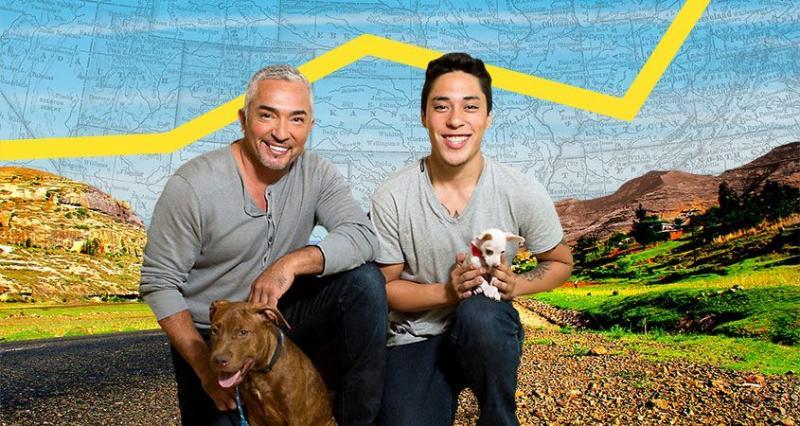 Nat Geo Wild to Premiere New Series CESAR MILLAN'S DOG NATION, Today