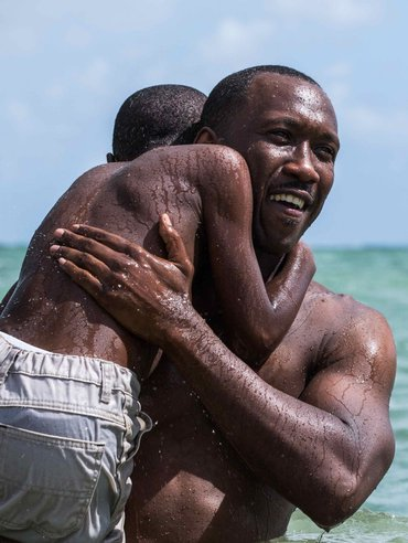 BWW Experts and Stage and Screen Stars Pick the 2017 Academy Award Winners