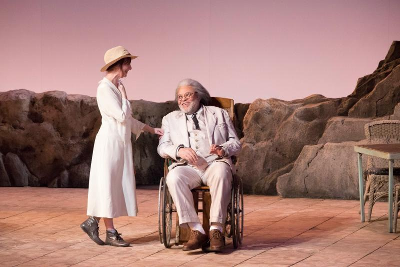 BWW REVIEW: A.R.T.'s THE NIGHT OF THE IGUANA Marks Life on the Edge