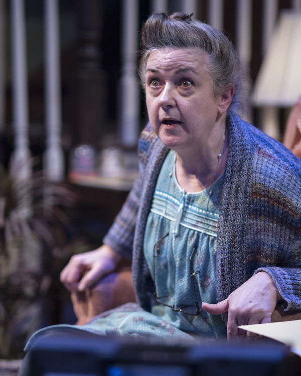 Photo Flash: First Look at Lisa Kron's WELL at 1st Stage