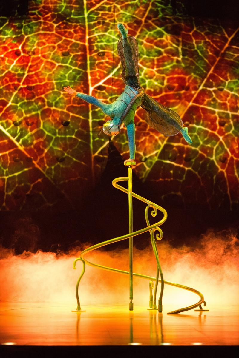 BWW Review: Cirque du Soleil Impresses with Insect-Inspired OVO