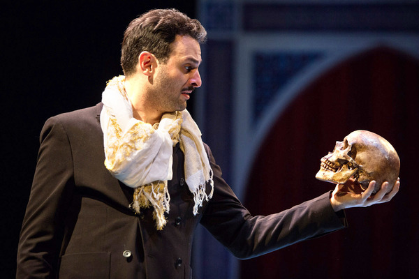 Photo Flash: First Look at Arian Moayed, Sherie Rene Scott, Micah Stock and More in Waterwell's Dual-Language HAMLET