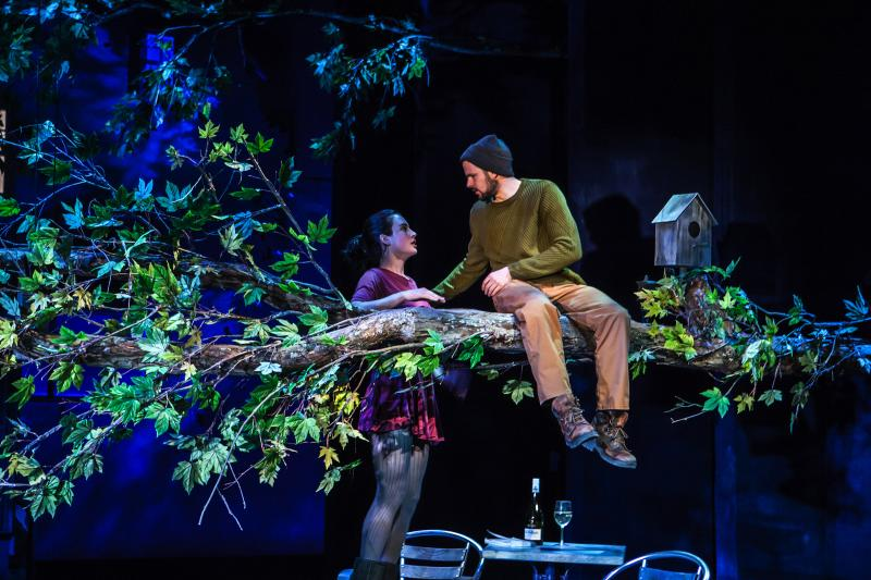 BWW Review: Norbert Leo Butz Stars in Hamish Linklater's Ambitious Drama THE WHIRLIGIG