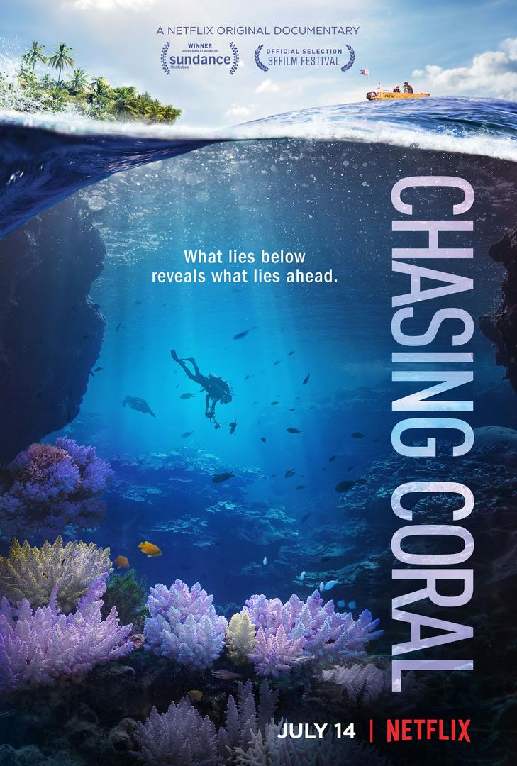 VIDEO: Netflix Shares Trailer & Key Art for Original Documentary CHASING CORAL