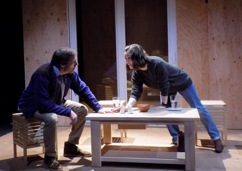 BWW Review: New Century's THE REALISTIC JONESES is Clever but Unsatisfying