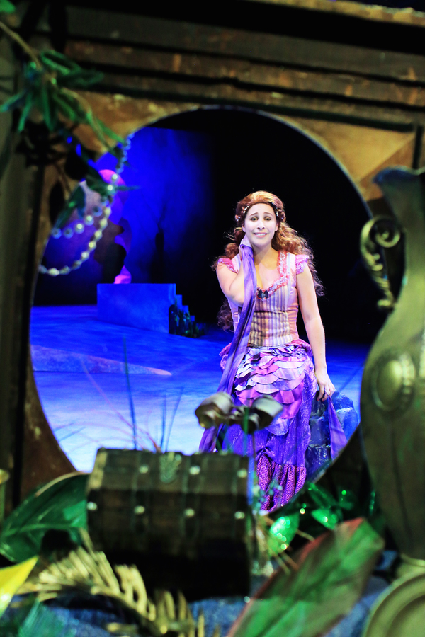 Photo Flash: First Look at Disney's THE LITTLE MERMAID at Flat Rock Playhouse