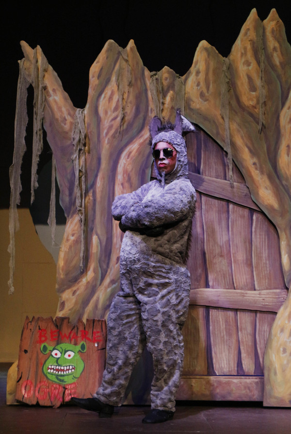 BWW Mini Blog: Woodlawn Theatre - The View From Fiona's Tower: Final Entry